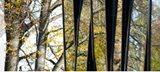 Die Fenster des Zentralen Institutsgebäudes spiegeln die umliegende Landschaft wider.